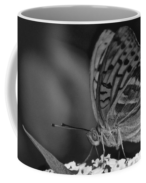 Wings Coffee Mug featuring the photograph Watchful Butterfly by Photos By Zulma