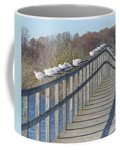 Seagulls Coffee Mug featuring the photograph Watching Autumn End by Ann Horn