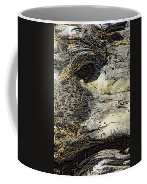 Wood Coffee Mug featuring the photograph Watching by Donna Blackhall