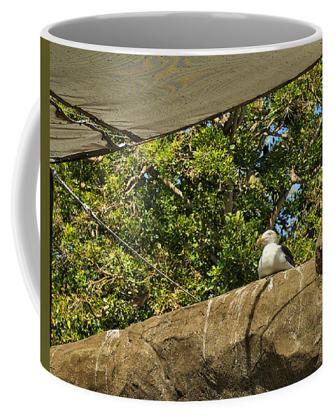 Santa Coffee Mug featuring the photograph Watching Over Penguins by Michael Gordon