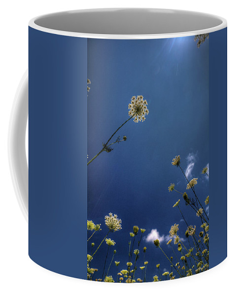 Queen Anne's Lace Coffee Mug featuring the photograph Watching The Day Float By by Steve Gravano