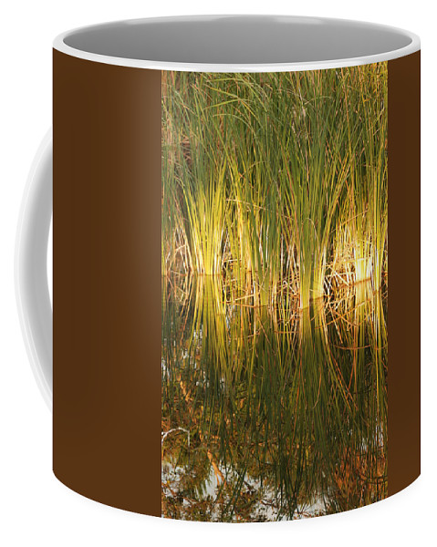 Grass Coffee Mug featuring the photograph Water Grass In Sunset by Rob Hans