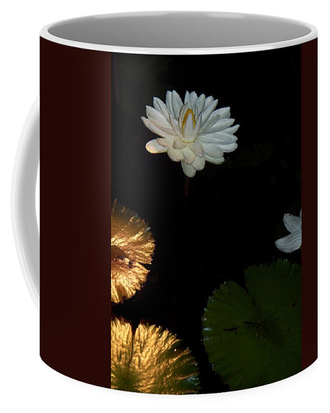 Water Lilies Coffee Mug featuring the painting Water Lilies And Pads by Eric Schiabor