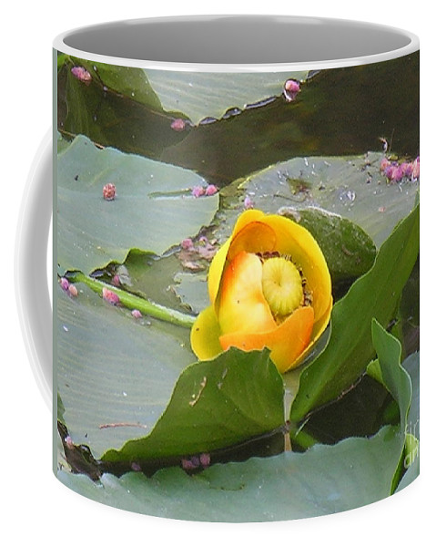 Water Coffee Mug featuring the photograph Water Lilly by Diane Greco-Lesser
