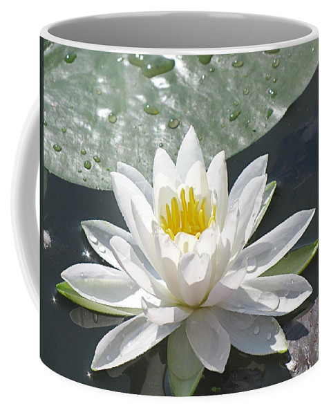 Background Coffee Mug featuring the photograph Water Lily by Jack R Perry