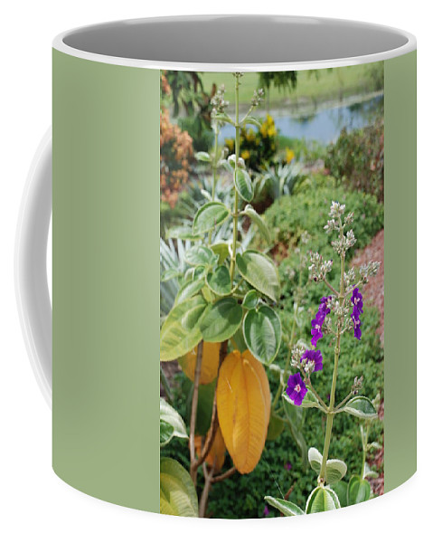 Water Coffee Mug featuring the photograph Water Plants And Flower by Rob Hans
