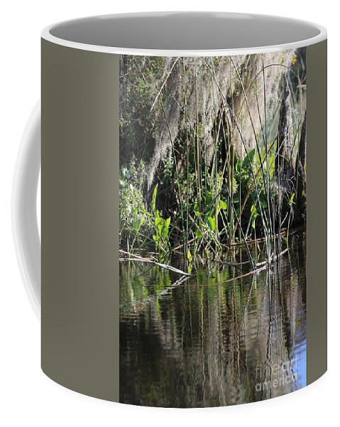 Swamp Coffee Mug featuring the photograph Water Reeds And Spanish Moss by Carol Groenen