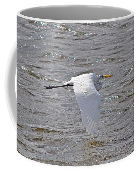 Egret Coffee Mug featuring the photograph Water Skimming by Kenneth Albin