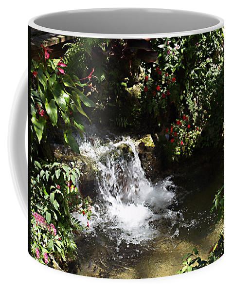 Water Coffee Mug featuring the photograph Waterfall by Bob Johnson
