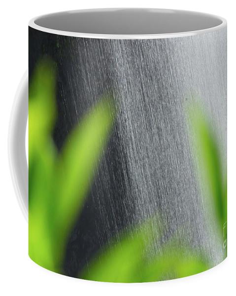 Waterfall Coffee Mug featuring the photograph Waterfall by Kris Hiemstra
