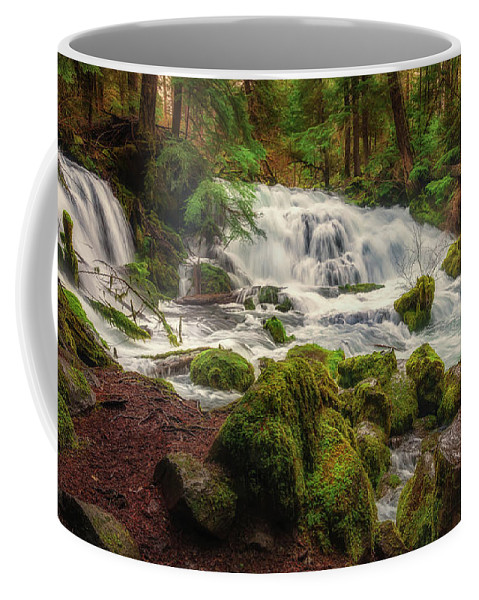 Falls Coffee Mug featuring the photograph Waterfall Reverie by S A Littau