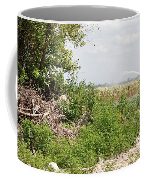 Leaves Coffee Mug featuring the photograph Watering The Weeds by Rob Hans