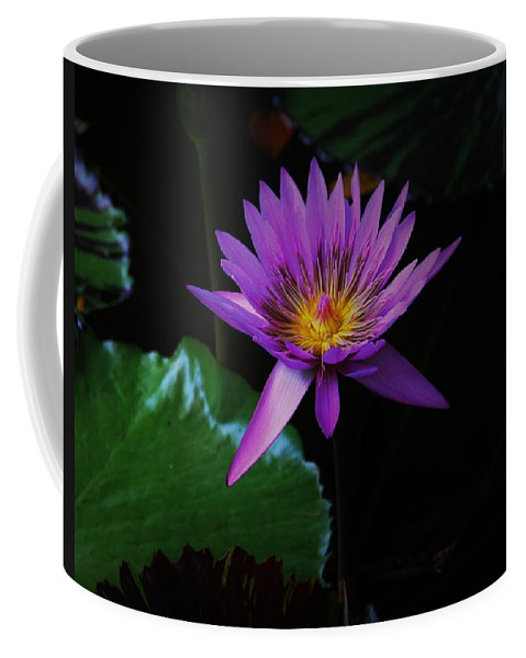 Garden Coffee Mug featuring the pyrography Waterlily by Kimberly Gust