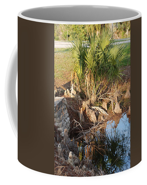 Roots Coffee Mug featuring the photograph Waters Edge by Rob Hans