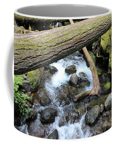 Streams Coffee Mug featuring the photograph Waters Run Through It by LKB Art and Photography