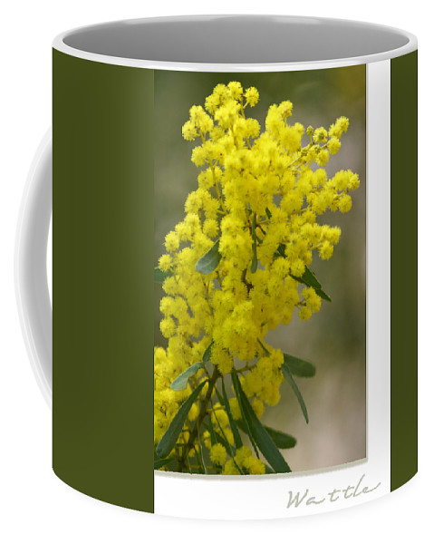 Nature Coffee Mug featuring the photograph Wattle by Holly Kempe
