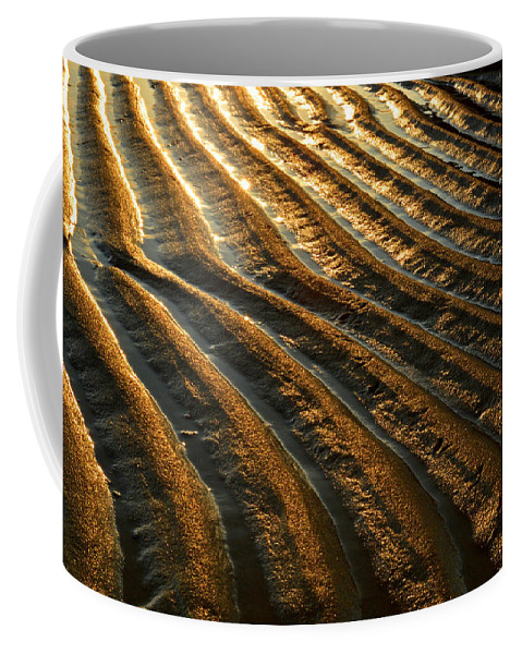 Cape Cod Bay Coffee Mug featuring the photograph Waves Of Gold by Dianne Cowen