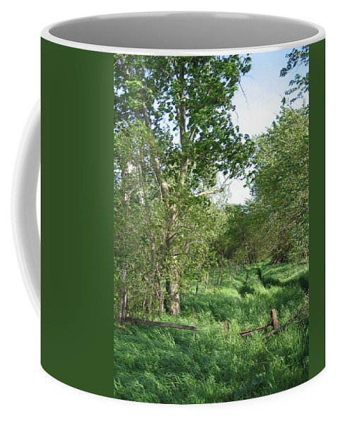Landscape Coffee Mug featuring the photograph Weary Traveler by Dylan Punke
