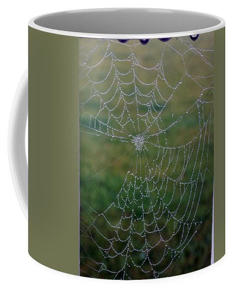 Spider Web Coffee Mug featuring the photograph Web After The Storm by William Tasker