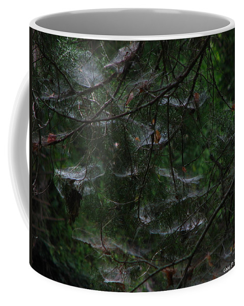 Patzer Coffee Mug featuring the photograph Webs Of A Tree by Greg Patzer