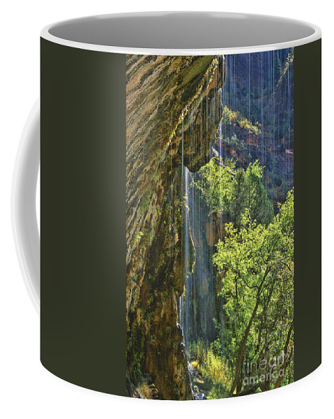 Southwest Coffee Mug featuring the photograph Weeping Rock - Zion Canyon by Sandra Bronstein
