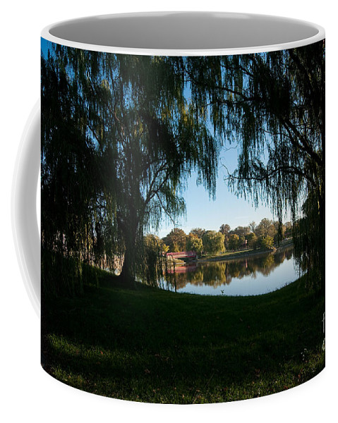 Weeping Coffee Mug featuring the photograph Weeping Willows by Steven Dunn