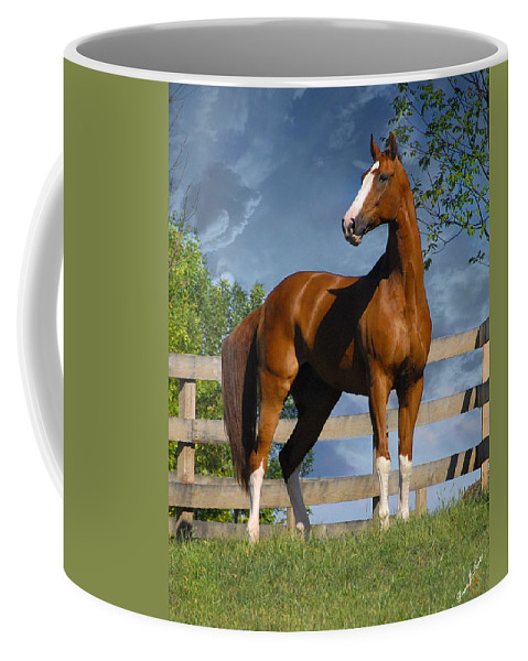 Horses Coffee Mug featuring the photograph Welt Adel by Fran J Scott
