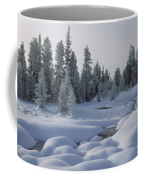 Yellowstone Coffee Mug featuring the photograph West Thumb Snow Pillows by Sandra Bronstein