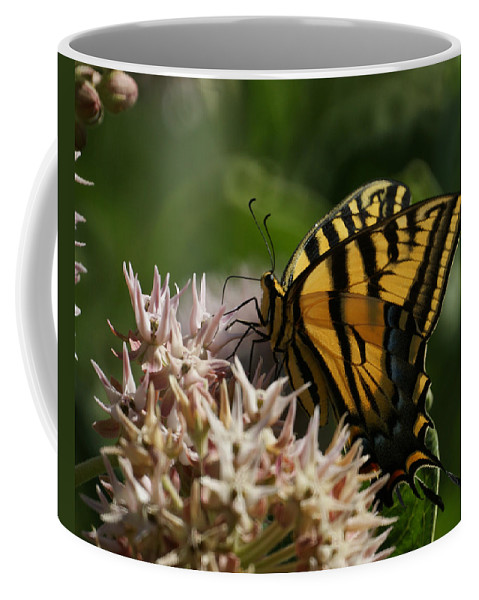 Bugs Coffee Mug featuring the photograph Western Tiger Swallowtail by Ernie Echols