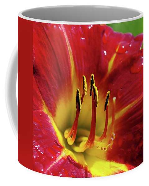 Flower Coffee Mug featuring the photograph Wet Lily by Deborah Bowie