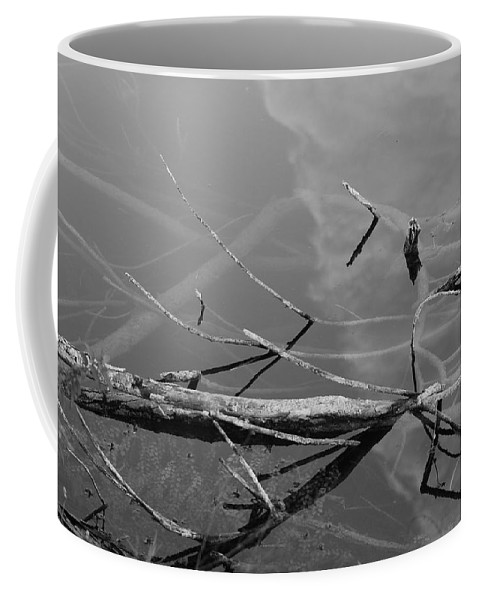 Black And White Coffee Mug featuring the photograph Wet Wood by Rob Hans