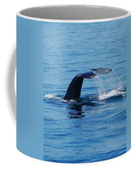 Whales Coffee Mug featuring the photograph Whales Tale by Lisa Kane