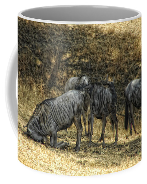 Wildebeast Coffee Mug featuring the photograph What A Bewildering Day by Donna Blackhall