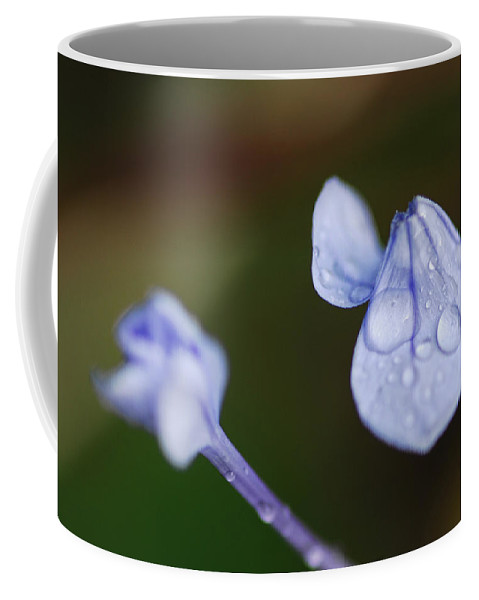 Flower Coffee Mug featuring the photograph What Did You Say by Donna Blackhall
