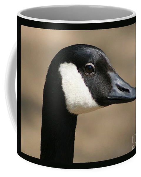 Geese Coffee Mug featuring the photograph Canadian Goose by Jean Clarke