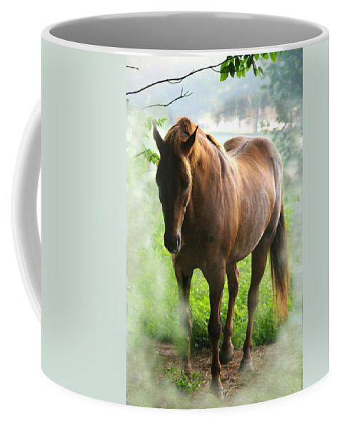 Jenny Gandert Coffee Mug featuring the photograph When You Dream Of Horses by Jenny Gandert