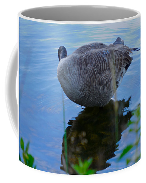 Seascape Coffee Mug featuring the photograph Where Are You Shadow by Sher Nasser