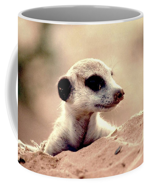 Meerkat Coffee Mug featuring the photograph Where Did Everyone Go by Kenneth Imler