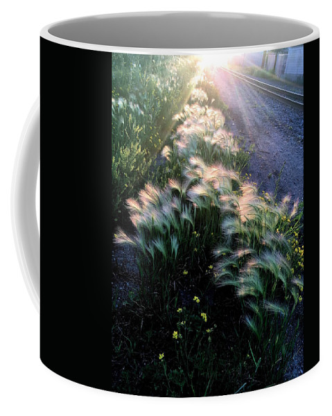 Grass Coffee Mug featuring the photograph Whisp#4 by Julian Grant