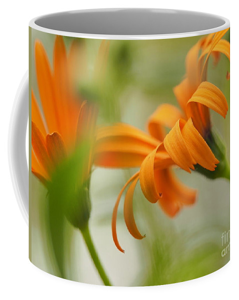 Flowers Coffee Mug featuring the photograph Whispers Of Orange Symphony by Dorothy Lee