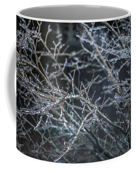 Icicles Coffee Mug featuring the photograph Whispers Of Winter by Karen Wiles