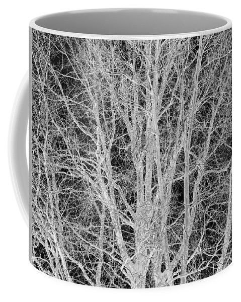 Black And White Coffee Mug featuring the digital art White Branches by Munir Alawi