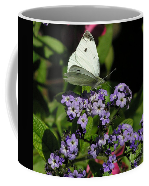 White Coffee Mug featuring the photograph White Butterfly by Louise Magno