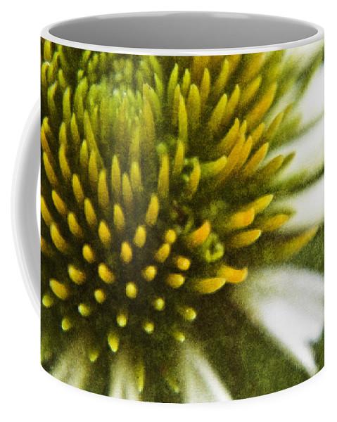 Coneflower Coffee Mug featuring the digital art White Coneflower by Teresa Mucha
