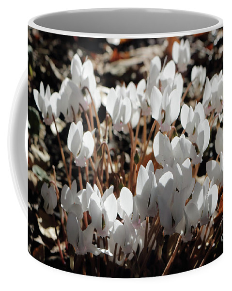 Coffee Mug featuring the photograph White Cyclamen by Julia Gavin