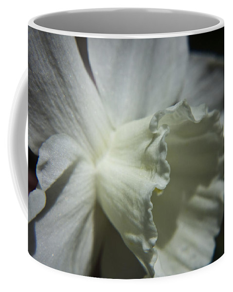 Flower Coffee Mug featuring the photograph White Daffodil by Teresa Mucha