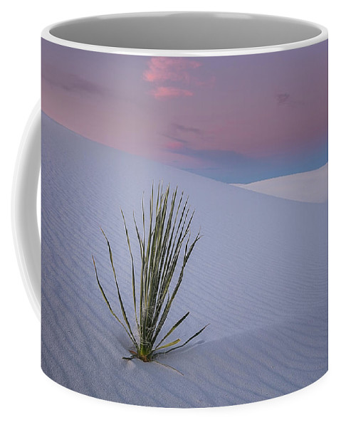 White Coffee Mug featuring the photograph White Dunes by Edgars Erglis