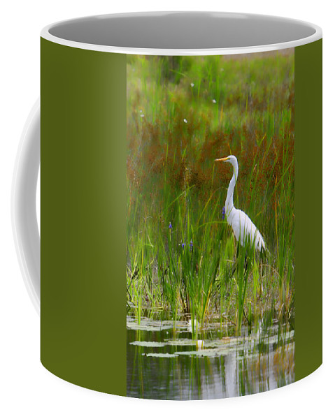 Bird Egret White Florida Swamp Pond Photograph Photography Coffee Mug featuring the photograph White Egret In Waiting by Shari Jardina