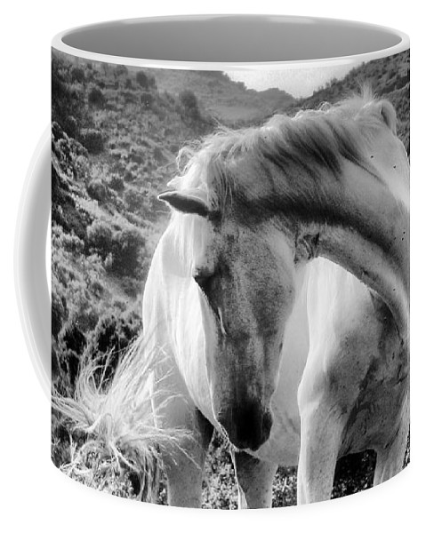 Horse Coffee Mug featuring the photograph White Elegance by Robin Fifield