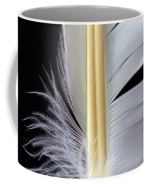 Feather Coffee Mug featuring the photograph White Feather by Bob Orsillo